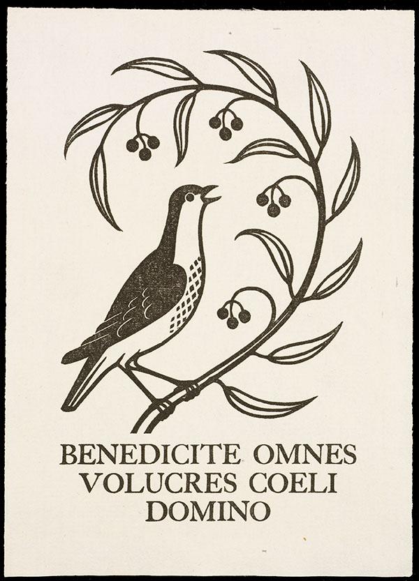 Fine Presses and Artists' Books // Rare Books & Special